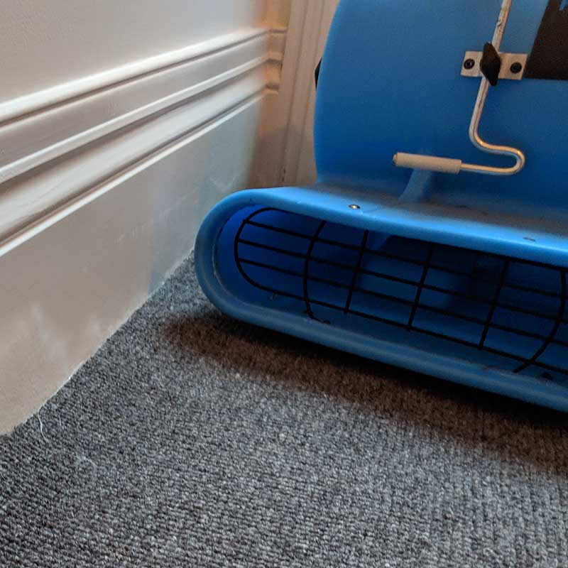 Hire Carpet Dyers Air Blower Equipment In Melbourne